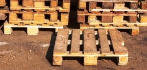 Discarded wooden pallets should not be used for firewood or crafts